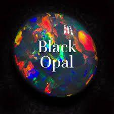 Image result for black opal
