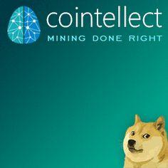 Invata sa Castigi!: Castiga bani cu Cointellect