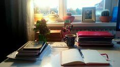 Ready to study.