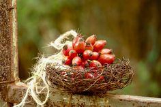Diese beiden wunderbar leuchtenden Herbstkränze aus den Fruchtständen der Eberesche hatte ich mir am Wochenende gebunden, nachdem mich Christin mit ihren herrlichen Instagram-Fotos dazu inspiriert hatte. Dieses orangerote Herbstleuchten fehlte mir noch im September-Garten. Kleine Hagebutten-Sträußchen sind ebenfalls Teil meines Herbstgartenschmucks…. …und ein Wickelstab aus Moos und herbstlichem Allerlei, steckt …