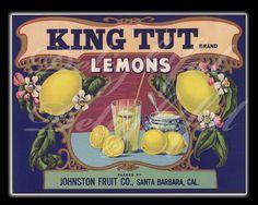 Lemon Fruit Crate Label