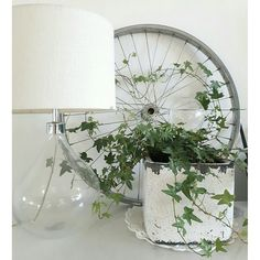 Ivy trained on an old bicycle wheel for a rustic, vintage plant display. This might work better as garden decor.