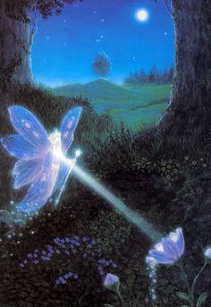 ≍ Nature's Fairy Nymphs ≍ magical elves, sprites, pixies and winged woodland faeries - Gilbert Williams Fantasy World, Fantasy Art, Arte Peculiar, Nature Aesthetic, Forest Fairy, Visionary Art, Art Abstrait, Fairy Art, Pretty Art