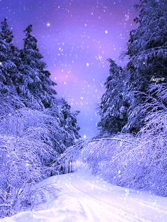 Фиолетовая зима Winter Love, Winter Snow, Winter Christmas, Winter Images, Winter Pictures, Scenery Pictures, Cool Pictures, Winter Photography, Nature Photography