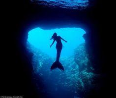 Sew Serene Mermaid