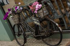 Bicycle with flowers by Zsolt Szabo on 500px