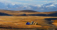 Deosai plain is considered to be one of the highest plains in the world. It is located between Skardu and Astore Valley. Its area is approximately 3,000 km2  Deosai is home of the famous Brown Bear, a rare animal found on earth.  It's a lush green meadow with plenty of foliage and a worth visiting place. http://www.saiyah.com.pk/