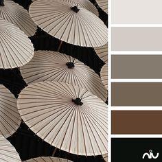 Umbrellas Color Palette
