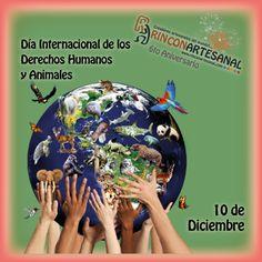 #FelizJueves. Celebremos nuestro derechos humanos y respetemos los de los animales.