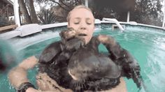 "tastefullyoffensive: "" Swimming with baby otters. [full video] "" This please. My heart would burst with glee and then melt in happiness."
