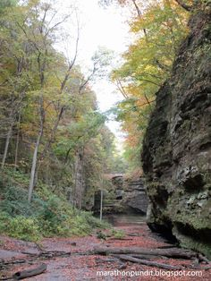 A with fall colors just emerging at Matthiessen State Park.