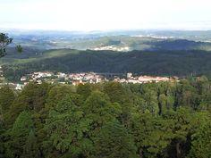 Buçaco | Bussaco | Luso | Portugal