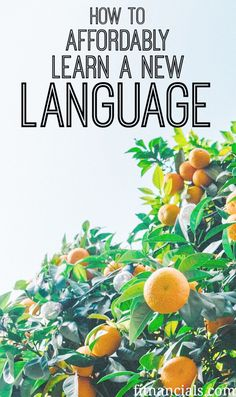 Babbel, A Language Learning Tool – An Honest Review. If you are wanting to learn a new language, check out this post!