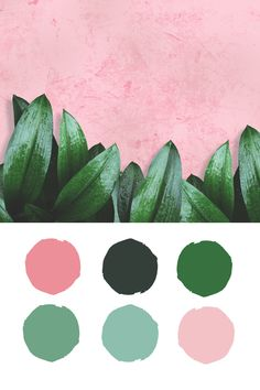 Summer Blush and Green Color Palette Inspiration by Ashley Furniture -- pink, blush, green, kelly green, mint Mint Color Palettes, Blush Color Palette, Green Color Schemes, Bedroom Color Schemes, Green Colors, Pink And Green, Kelly Green, Color Inspiration, Decoration