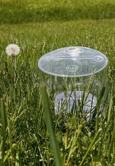 It's time to get outside - Luci Original. Inflatable Solar Light | Outdoor Lighting