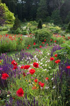 Best DIY Cottage Garden Ideas From Pinterest (16)