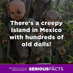 There's a creepy island in Mexico with hundreds of old dolls! #creepy #fact #mexico