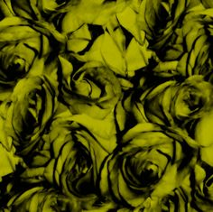 Roses By The Light Of The Firefly ~ by PeacoquetteDesigns on Spoonflower ~ bespoke fabric, wallpaper, wall decals & gift wrap ~ Join PD  ~ https://www.facebook.com/PeacoquetteDesigns #Spoonflower #Peacoquette