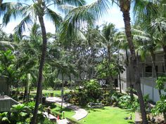 Garden at the heart of the Honolulu International Airport