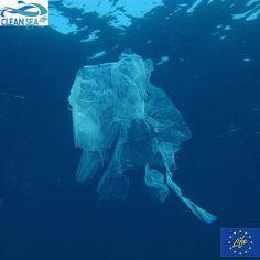 Sapeste quanti sacchettini troviamo in spiaggia o in acqua! In Italia pare se ne usino 10 miliardi lanno!!!! Gratis o no dobbiamo usarne meno perché troppi finiscono in mare.  #sacchetto #marepulito #rifiutimarini #Cleansealife #riciclarefabene