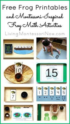 LOTS of free frog printables (including a Living Montessori Now subscriber freebie frog pack) plus Montessori-inspired frog activities for preschoolers through 1st graders