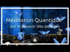 Méditation Quantique sur le pouvoir des pensées 🌼 Cédric Michel - YouTube Qi Gong, Ayurveda Yoga, Yoga Nidra, Nature Sounds, Chakra Meditation, How To Feel Beautiful, Stress Relief, Affirmations, Spirituality