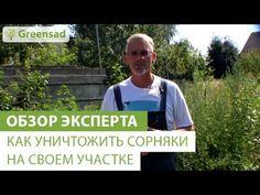 Уничтожаем сорняки!!! 4 видео. Обсуждение на LiveInternet - Российский Сервис… Outdoor Gardens, Youtube, Weed, Garten, Gardens, Youtube Movies