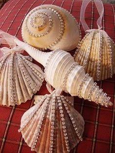 Schelpen ornamenten
