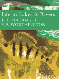#15 Life in Lakes & Rivers