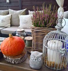 Dzień dobry w ostatnim dniu sierpnia.To był piękny, słoneczny miesiąc. Zobaczymy co przyniesie nam wrzesień.😊 Udanego dnia 😊 #rano #poranek #morning #goodmorning #dzieńdobry #autumnfeeling #lato #summertime #bye  #byebyeaugust #dynia #wrzos #autumncolors #autumnflowers #sowa #eule #pumpkin #pumpkinmaniaclara #natarasie #latonatarasie #natarasienajlepiej