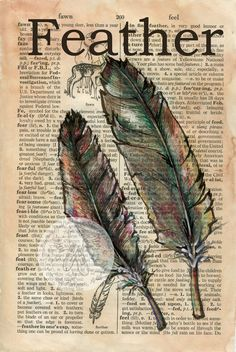 PRINT:  Feather Mixed Media Drawing on Distressed, Dictionary Page. $10.00, via Etsy.