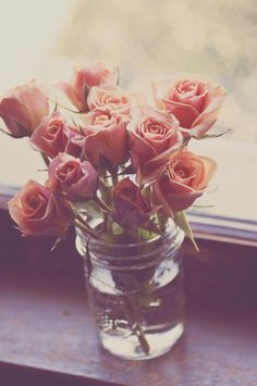 soulmate24.com Photo #flowers #nature #roses #pink #beauty