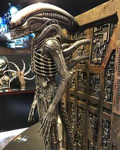 Giger Alien, Predator Alien, Xenomorph, Vaulting, Studio, Instagram, Aliens, Scale, Big