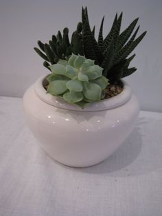 love this planter!
