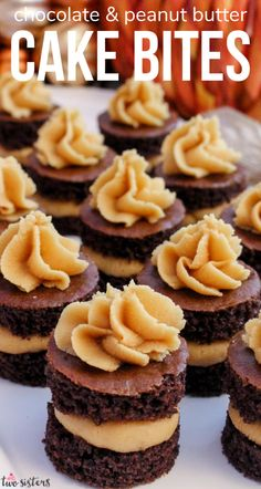 Chocolate Cake Bites with Peanut Butter Frosting - fun mini cakes with the most delicious Peanut Butter Frosting you have ever tasted. A great dessert idea and a unique take on a cupcake. Super easy to make, they will be a big hit with your family. Follow us for more fun Dessert Recipe ideas. Peanut Butter Bites, Peanut Butter Desserts, Peanut Butter Frosting, Chocolate Peanut Butter, Great Desserts, Best Dessert Recipes, French Desserts, Dessert Ideas, Mini Cakes
