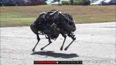 Wildcat, le nouveau joujou de Boston Dynamics - Cactus-Brûlant.com