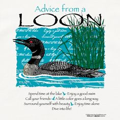 Advice from a Loon