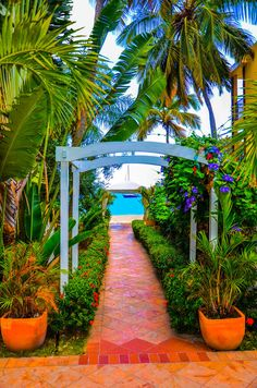 Beach Path - Saint Thomas, U. Beautiful Islands, Beautiful Beaches, Beautiful World, Dream Vacations, Vacation Spots, Places To Travel, Places To See, Travel Destinations, Us Virgin Islands