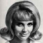 1960's Hairstyles.  When I was a teenager (in the 60's) I so much wanted my hair to look like this...but having curly hair, it was a no-go.  http://50spoodleskirtblog.com/wp-content/uploads/2009/06/Picture-161-150x150.png