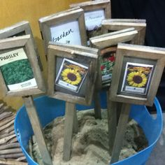 Seed packages framed as plant labels. Could laminate the packages, slide in the new labels. Use leftover pallet wood for the frames & stakes? Garden Labels, Plant Labels, Plant Markers, Garden Markers, Greenhouse Supplies, Seed Packaging, Garden In The Woods, Garden Signs, Amazing Gardens