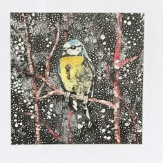 Instagram Site, Blue Tit, Prints For Sale, Gouache, Layering, Woodland, Wildlife, Indian, Ink