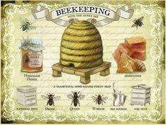 New Beekeeping Honey Bee Vintage Enamel Style Tin Metal Advertising Sign | eBay