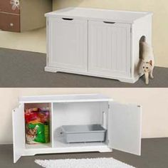 Hide that cat box! -- For when I get a cat!!
