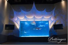 One of our favorite venues updated their Theater Room and it looks amazing. We love the Newport Aquarium and it is the perfect spot to host a wedding, reception or rehearsal dinner. It is such a unique location and your guests will enjoy the entertainment.  http://www.newportaquarium.com www.pottingerphoto.com/blog www.pottingerphoto.com