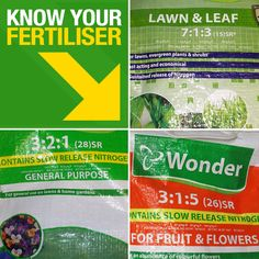 Apply fertilliser to your garden's shrubs, lawn and even your vegetable gardens. Learn here what is the best way to apply fertiliser to your garden. Fruit Flowers, Garden Shrubs, Vegetable Garden, Knowing You, Lawn, How To Apply, Gardens, Hardware, Learning