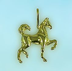 Saddlebred  Baby Pendant Beautiful Horses, Equestrian, Show Jumping, Horseback Riding, Horses, Equestrian Problems