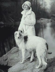 z- Borzoi & Hope Hampton (Silent Films) -2a
