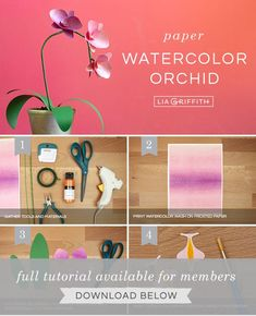 Printed Paper Phalaenopsis Orchid with Watercolor Wash - Lia Griffith Paper Flowers Craft, Flower Crafts, Diy Flowers, Pink Paper, Paper Roses, Phalaenopsis Orchid, Orchids, Clay Crafts For Kids, Diy Crafts