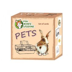 Karty Zwierzęta domowe - Lekcje Liska Boni // Pets- Fox Boni's Lessons