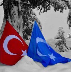 Sufi, Wonderful Places, Istanbul, Flag, Culture, Wallpaper, Outdoor Decor, Flowers, Instagram